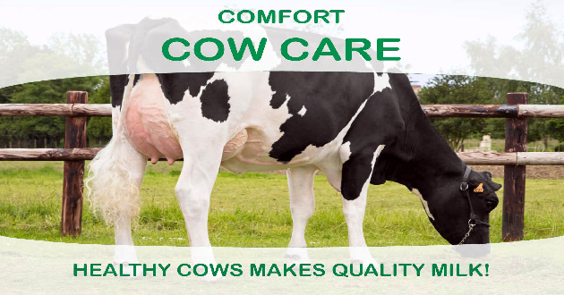 Confort Cow Care