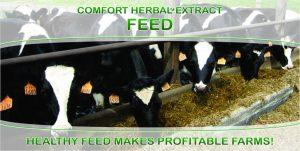 Comfort Herbal Extract Feed