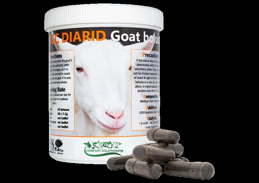NCC Bolus Goats